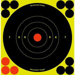 Birchwood casey-Shoot NC reactive targets 6