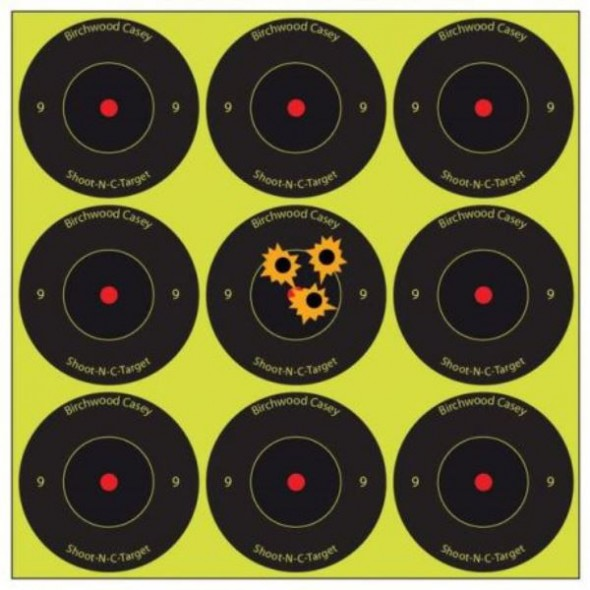 NEW Birchwood casey: Shoot NC reactive targets 2