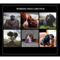 Country Matters-Card pack - Dog range 6