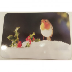 Country Matters-Placemat Bobbin the Robin