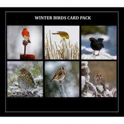 Country Matters-Card pack - Winter birds 6